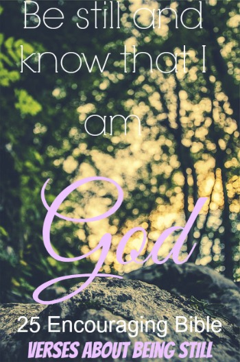 25 Encouraging Bible Verses About Being Still (Must-Read)