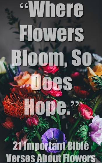 21 Important Bible Verses About Flowers (Awesome Scriptures)