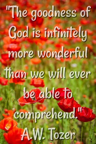The goodness of God is infinitely more wonderful than we will ever